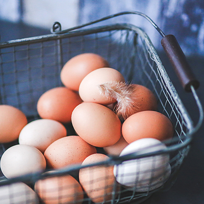 Eggs – a user's guide