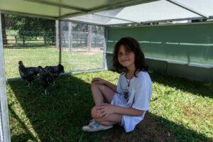 Jumbo Chicken Coop Tractor inside